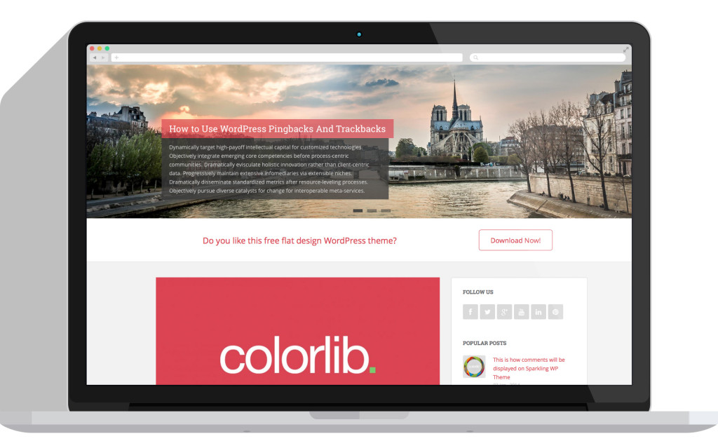 Colorlib Sparkling theme is one of the WordPress resources available from this page.